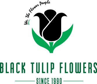 Black Tulip Flowers Qatar